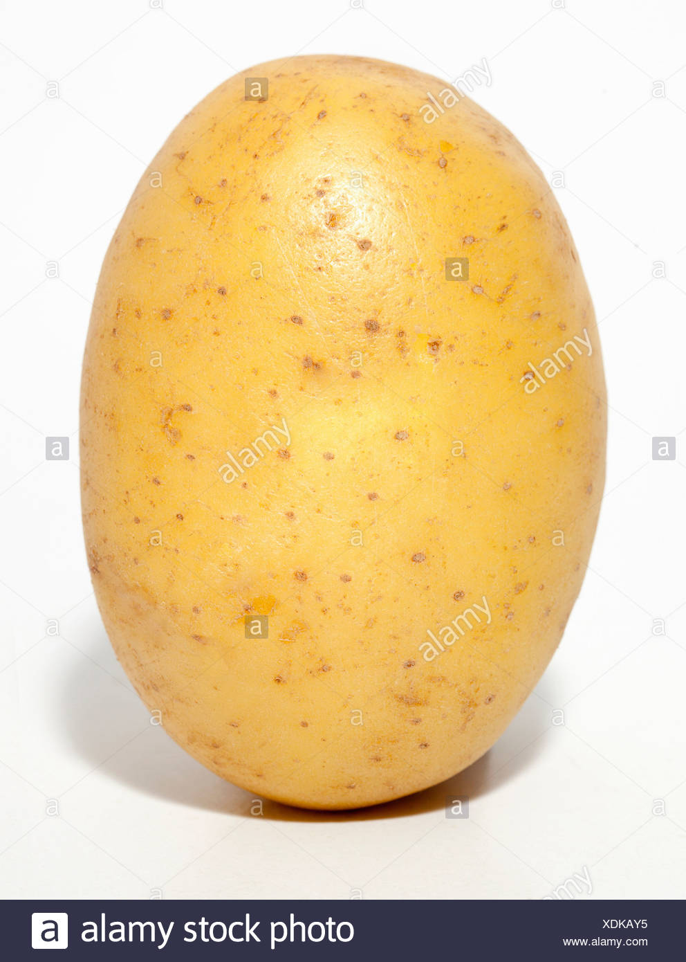 Raw potato - Stock Image