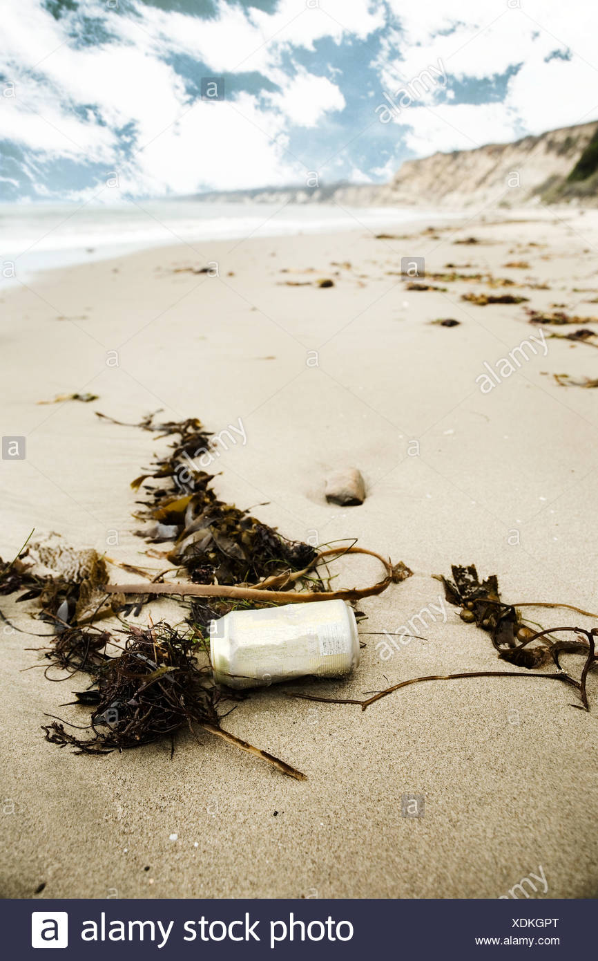 Discarded can on a sandy beach - Stock Image