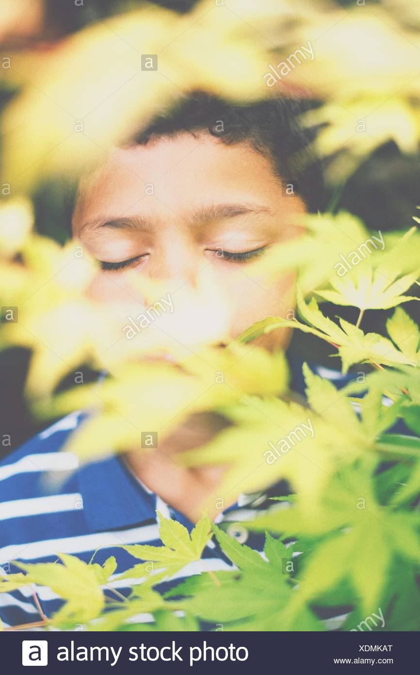 Boy With Eyes Closed Seen Through Plants - Stock Image