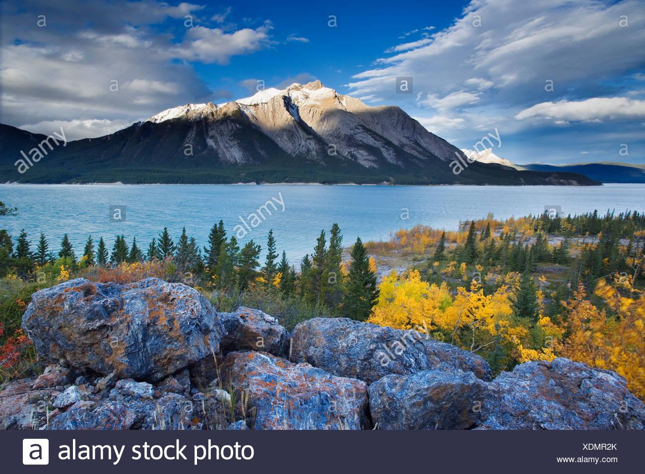 Lake Abraham and Mount Michener, Kootenay Plains, Alberta, Canada - Stock Image