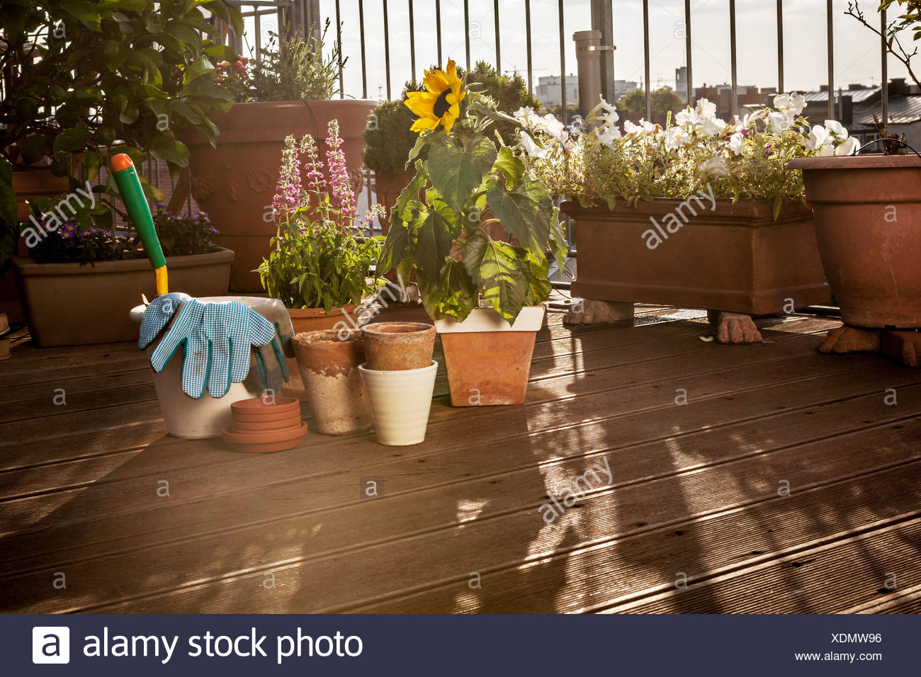 Flower Pots And Garden Tools On Balcony, Munich, Bavaria, Germany, Europe - Stock Image