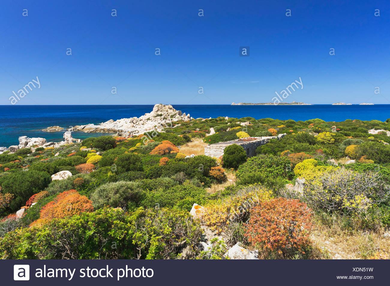 House and Macchia shrubland on the beach of Punta Molentis, Villasimius, Sarrabus, Cagliari province, Sardinia, Italy, Europe - Stock Image