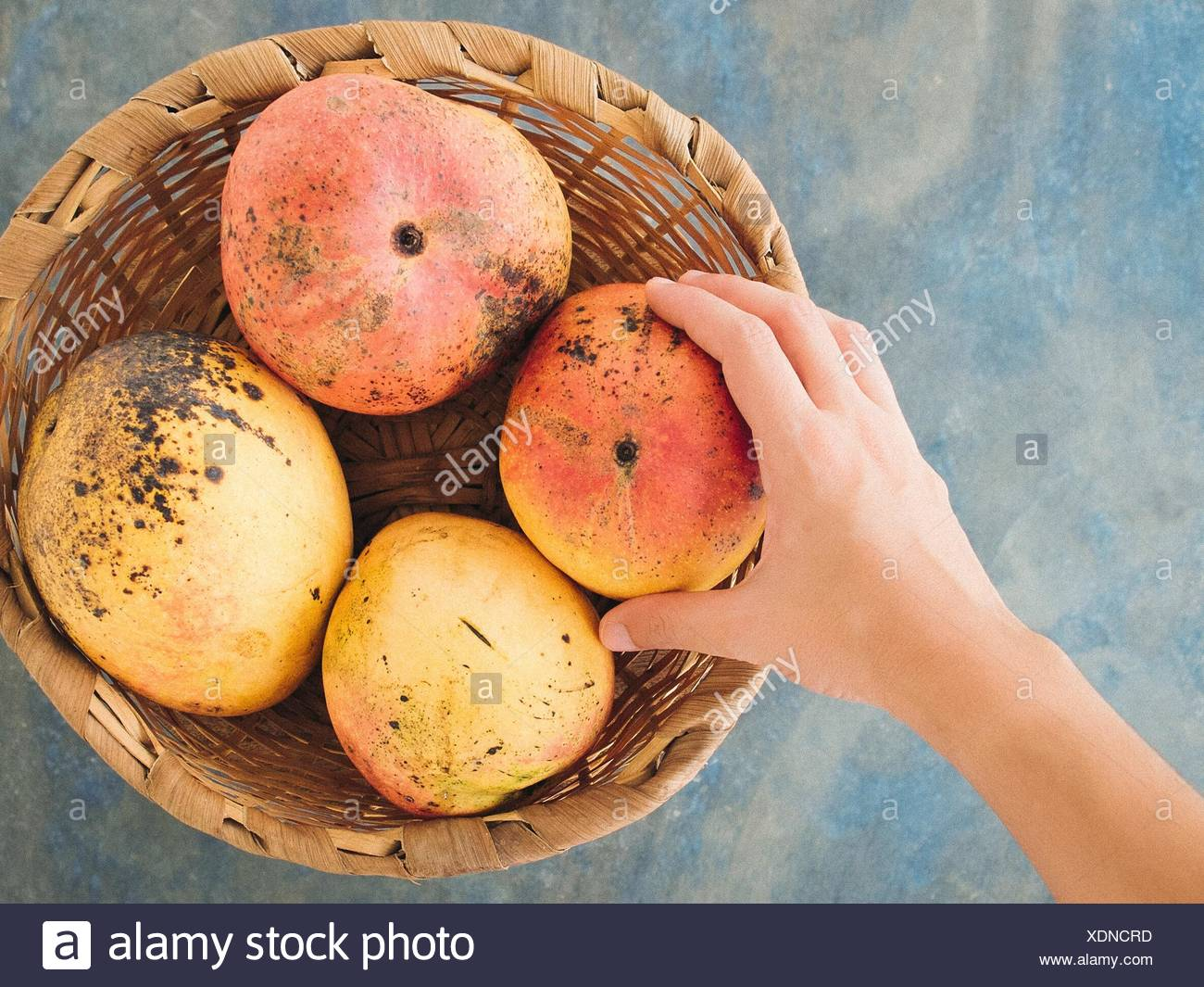 Cropped Image Of Hand Touching Mangoes In Whicker Basket On Table - Stock Image