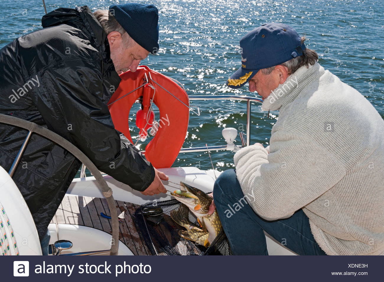 Deep-sea fishermen with a freshly caught pike, Baltic Sea, Germany, Europe - Stock Image