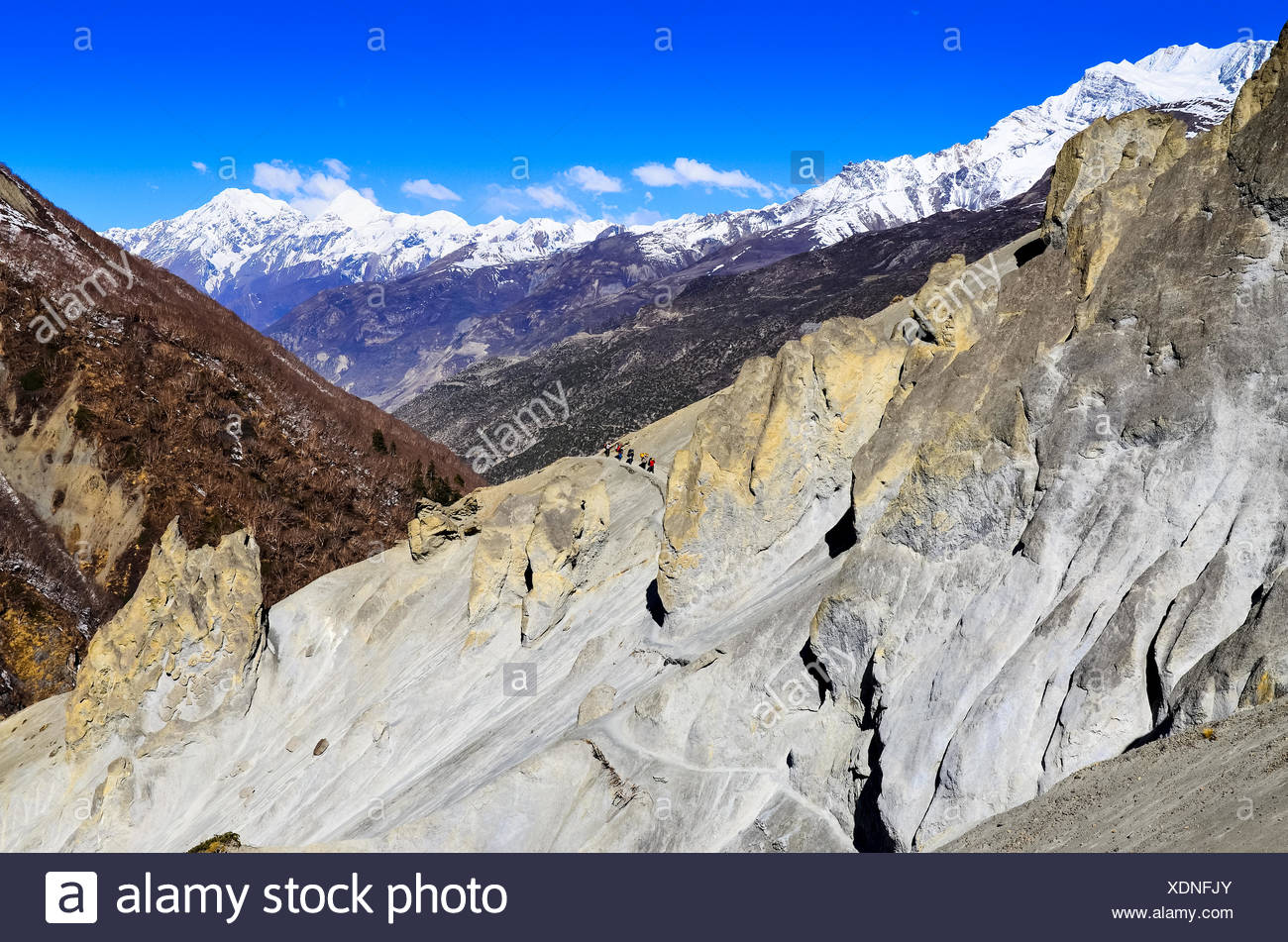 Mountain trekkers walking in the mountains - Stock Image