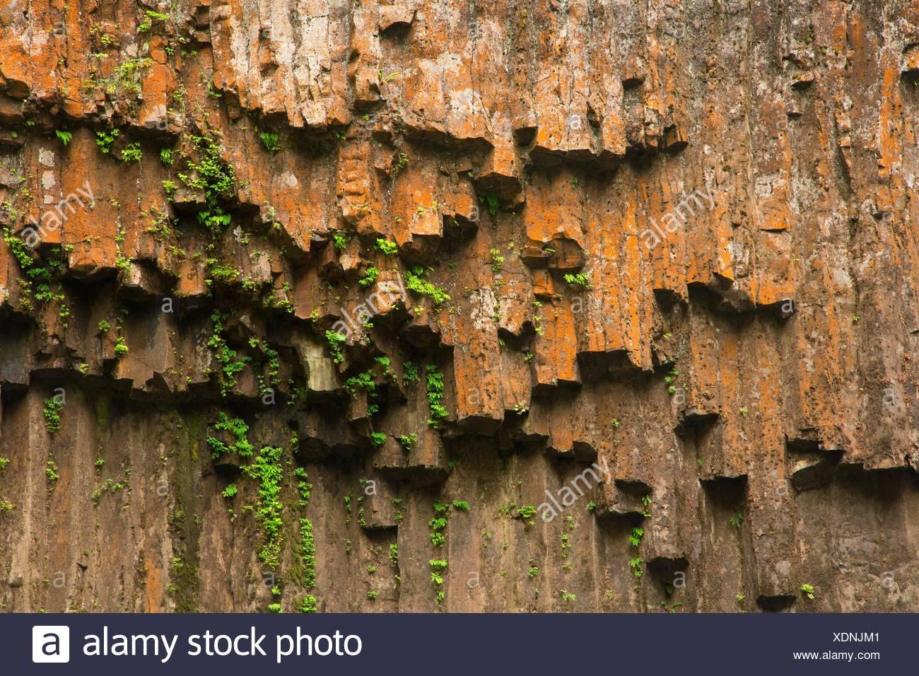 Columnar basalt at Abiqua Falls, Marion County, Oregon. - Stock Image