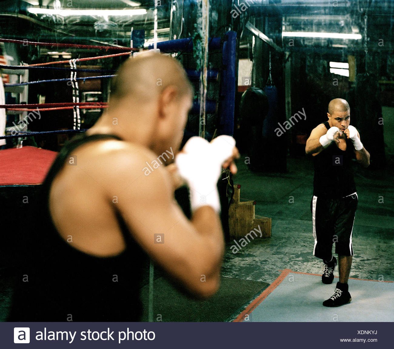 Man shadowboxing in Brooklyn boxing gym Stock Photo