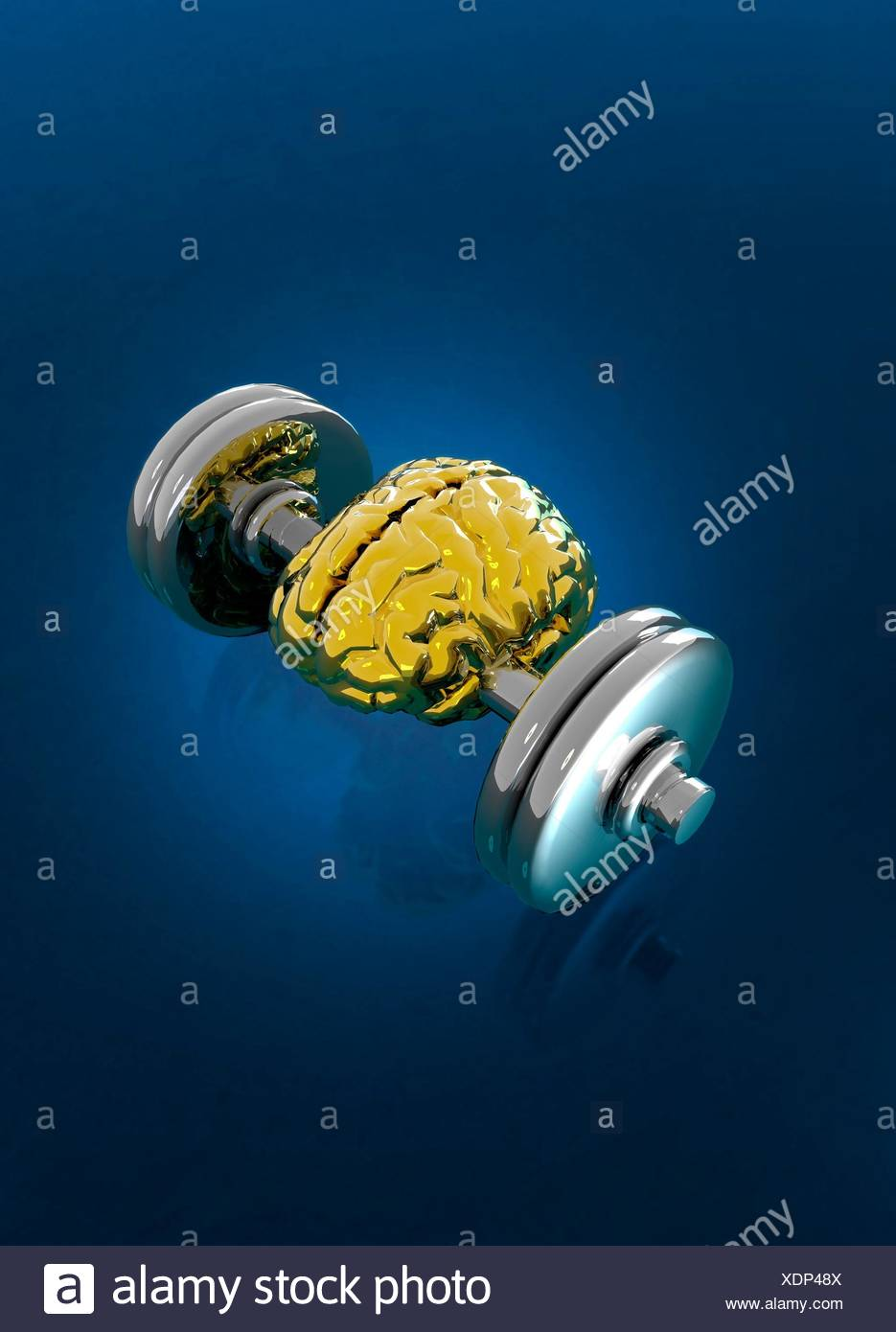 Human brain between weights on dumbbell, illustration. - Stock Image