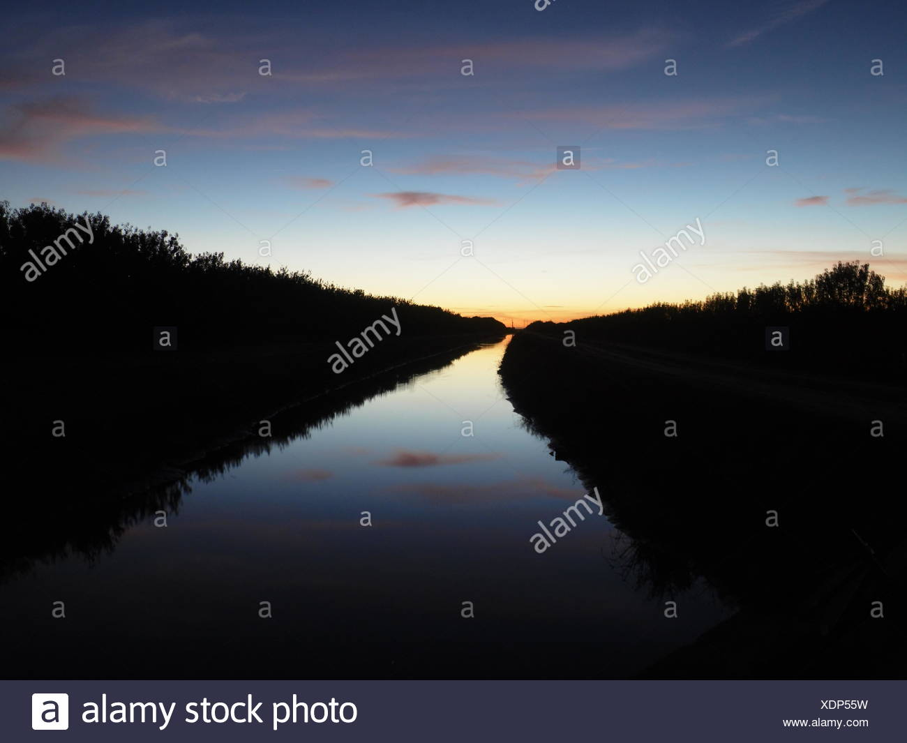 River Passing Through A Forest At Sunset - Stock Image