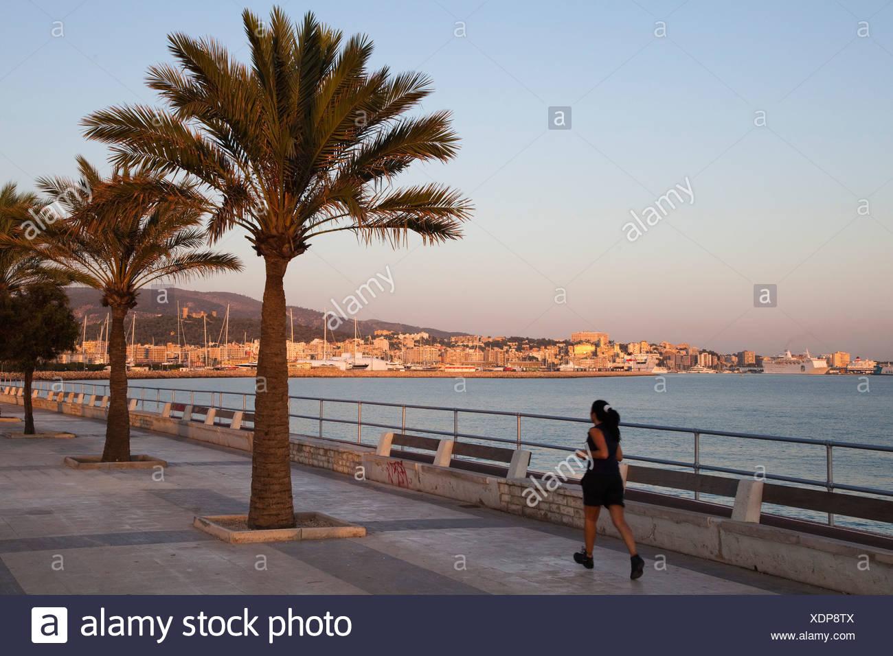 Waterfront Avinguda Gabriel Roca at Palma at sunrise, Mallorca, Balearic Islands, Mediterranean Sea, Spain, Europe - Stock Image
