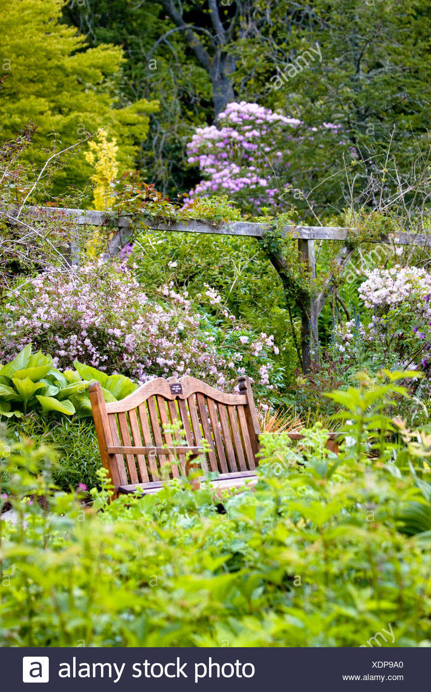 Scotland, Leith Hall, wooden bench in formal garden - Stock Image