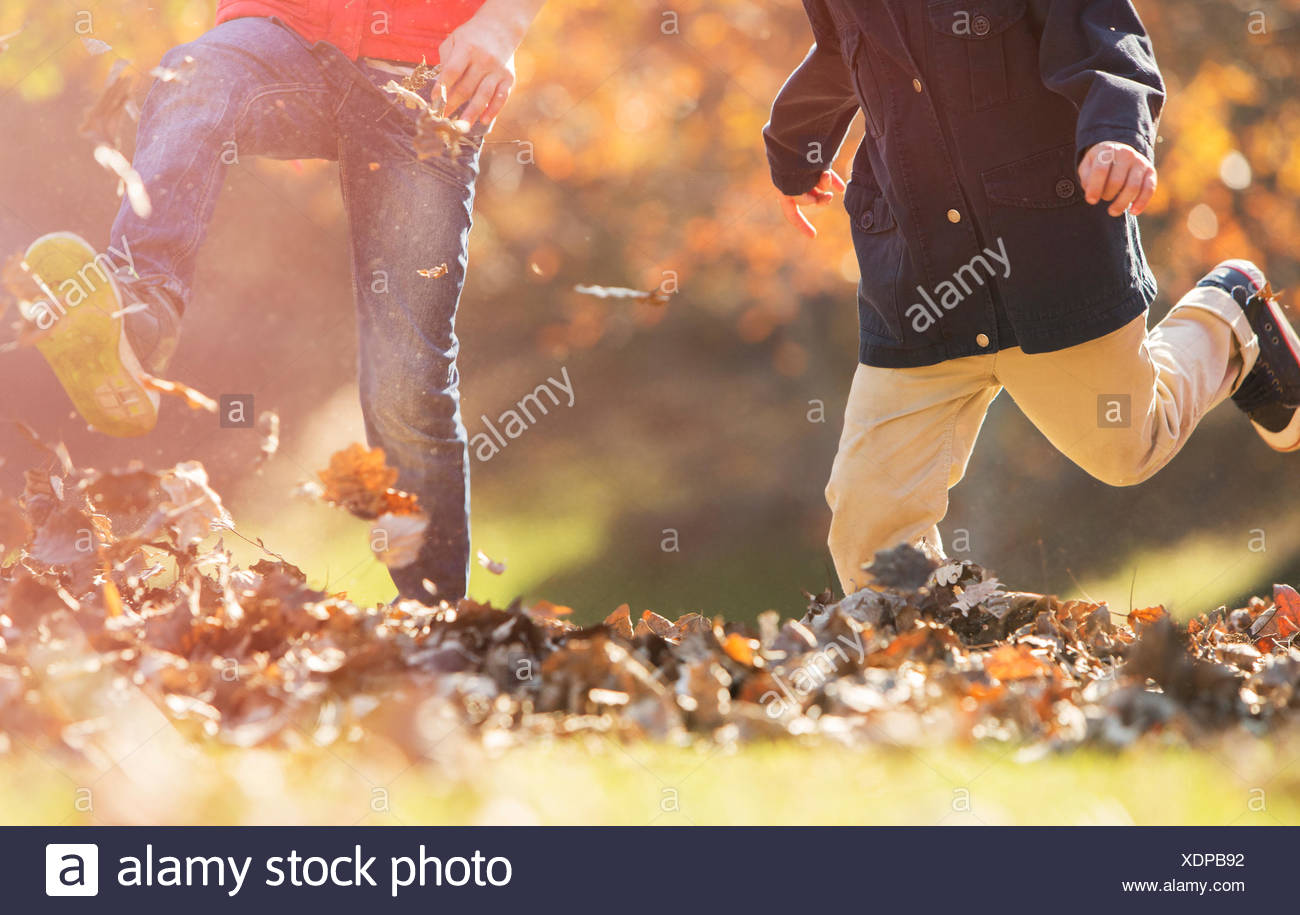 Playful boys kicking autumn leaves - Stock Image