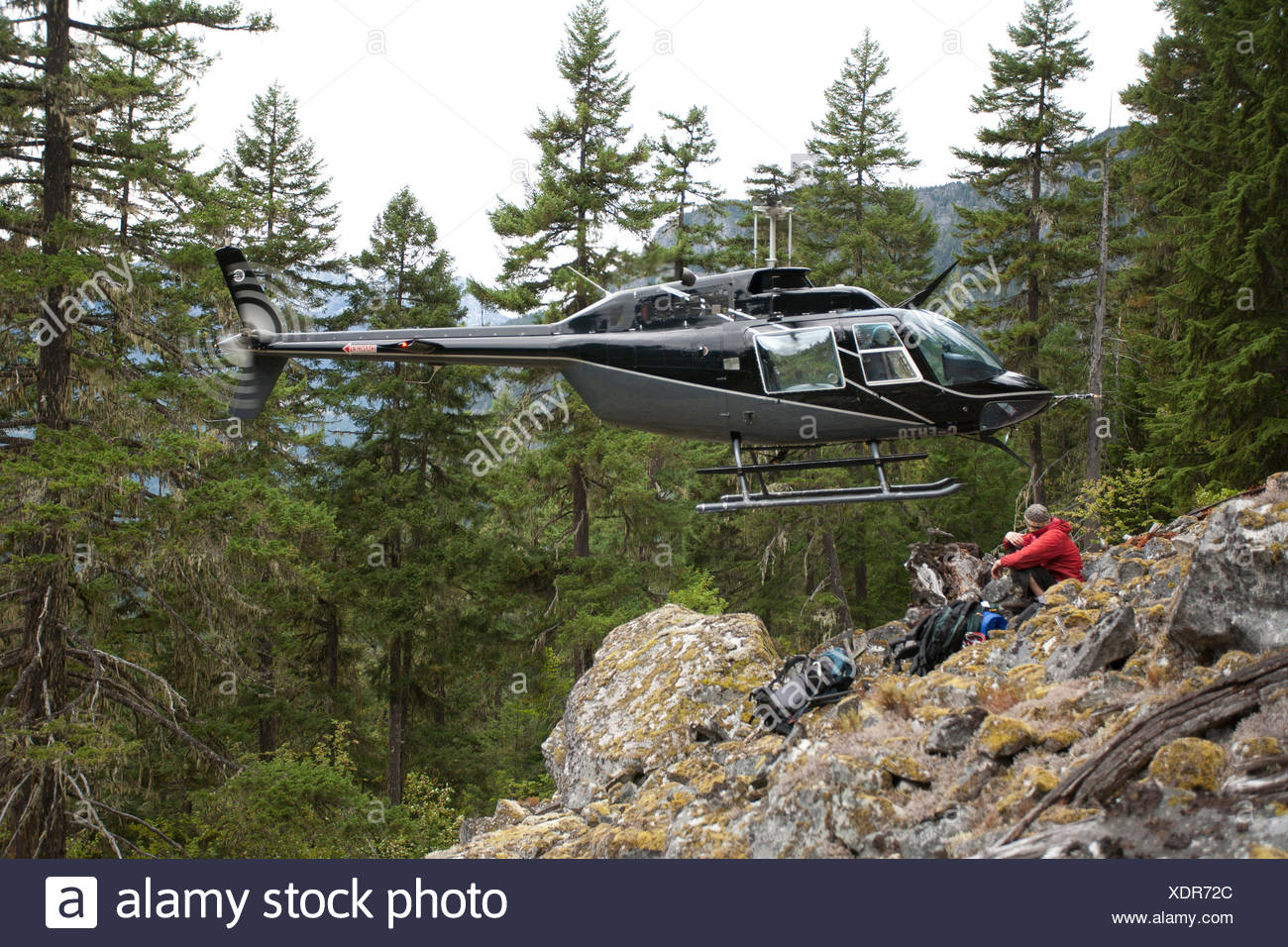 Hover Entry, spotted owl surveys, Pemberton, BC, Canada - Stock Image