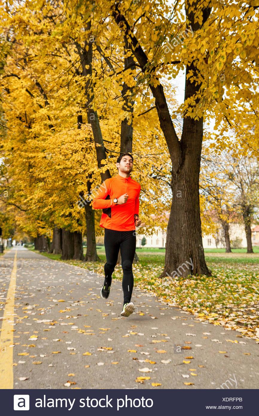 Male runner jogging in park - Stock Image