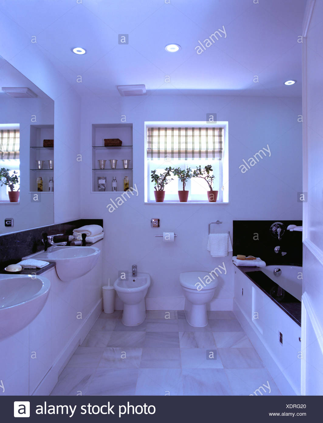 . Checked blind on window above toilet and bidet in modern white