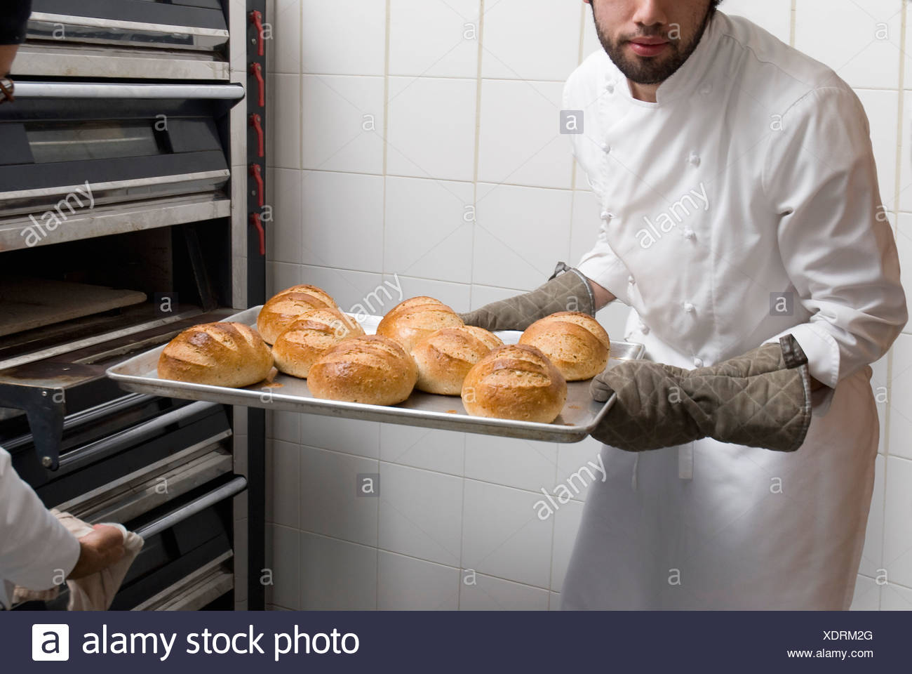 Cook taking the bread loaves out of the oven - Stock Image