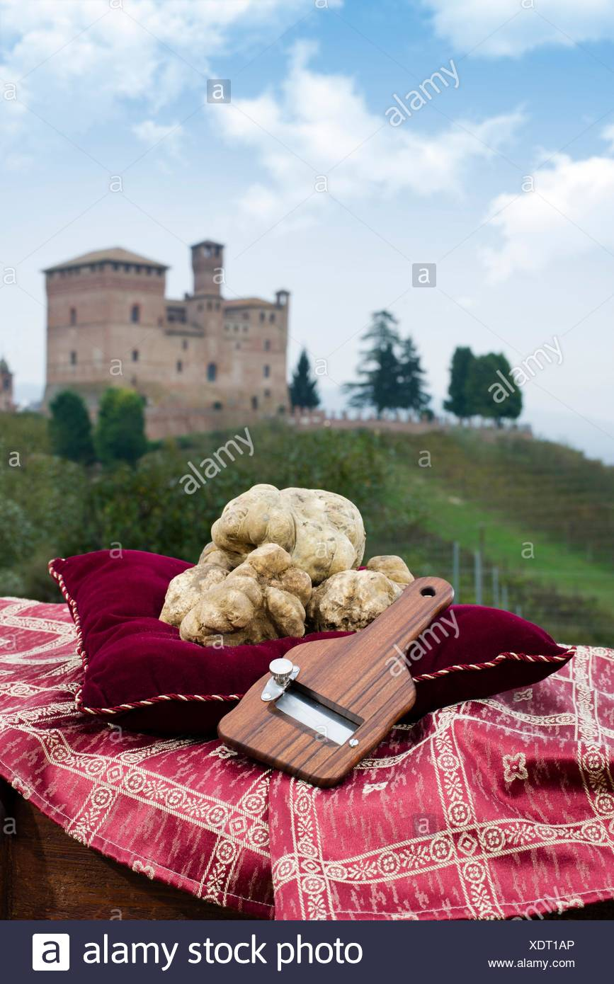 Still Life the White Truffles from Piedmont and size truffles, with views over the vineyards and the castle of Grinzane Cavour. - Stock Image