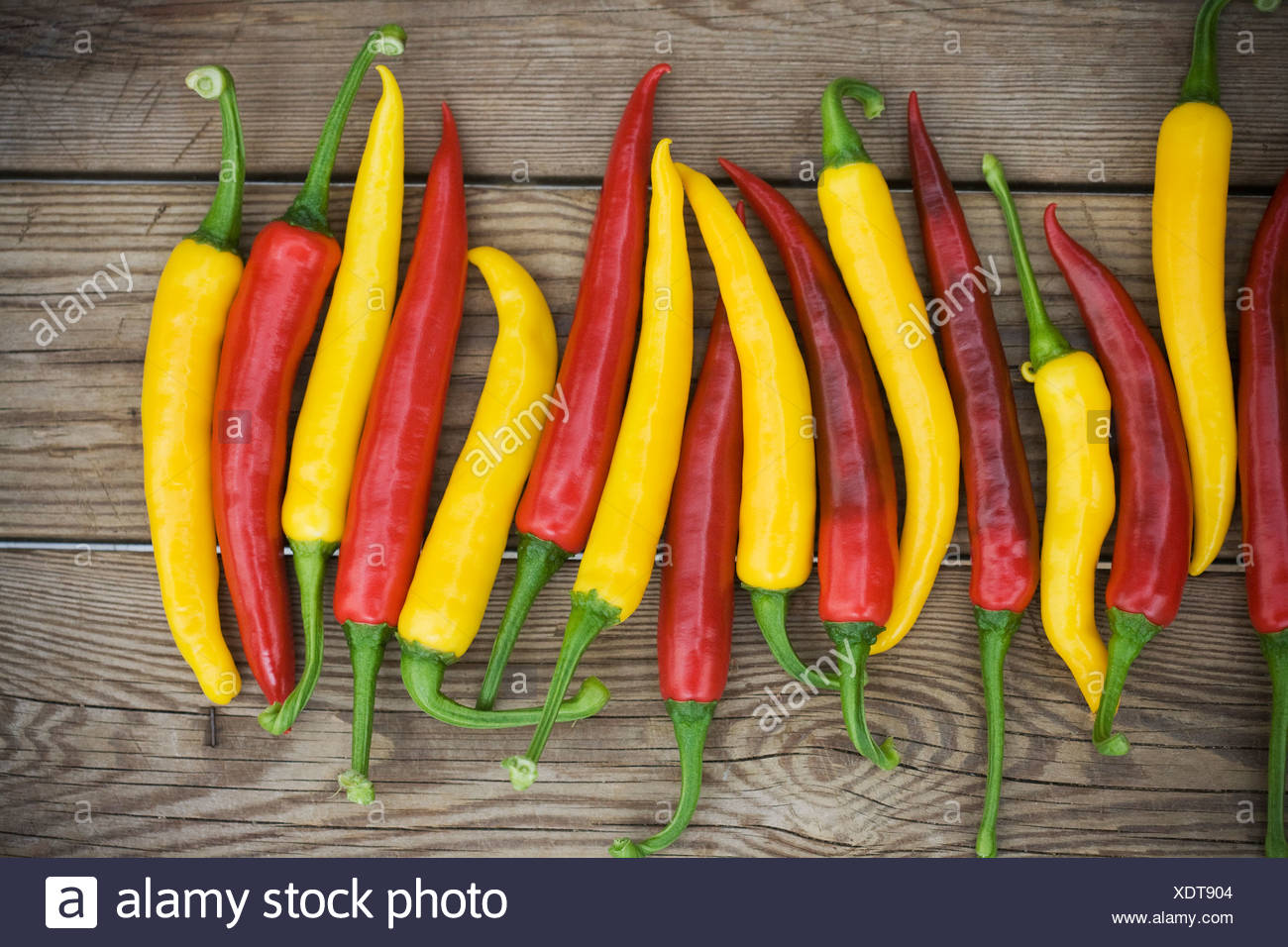 Row of chilli peppers on wooden board - Stock Image