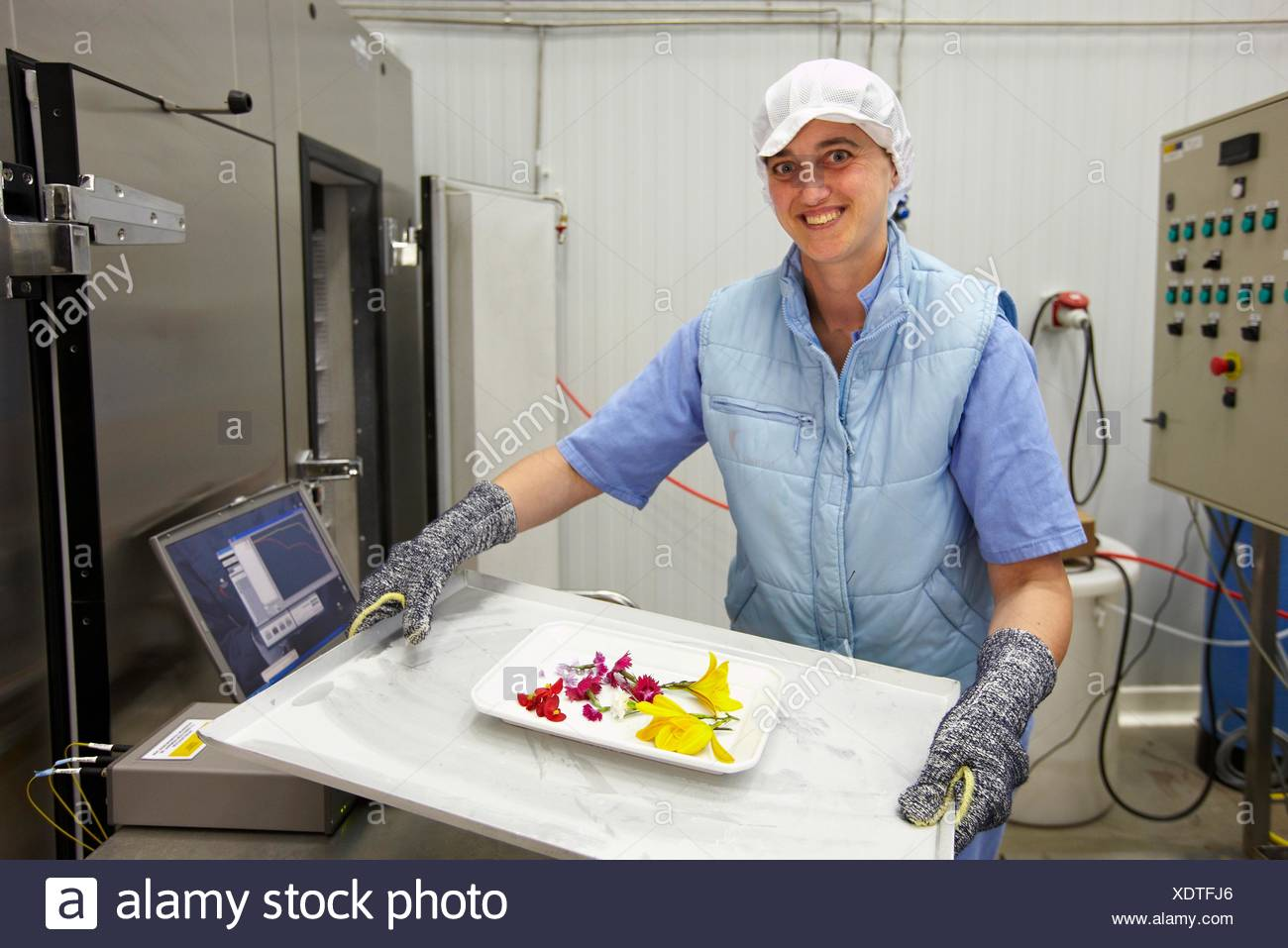 Quick-freezing equipment with CAS feature that returns food to almost the original state before thawing , AZTI-Tecnalia Marine - Stock Image