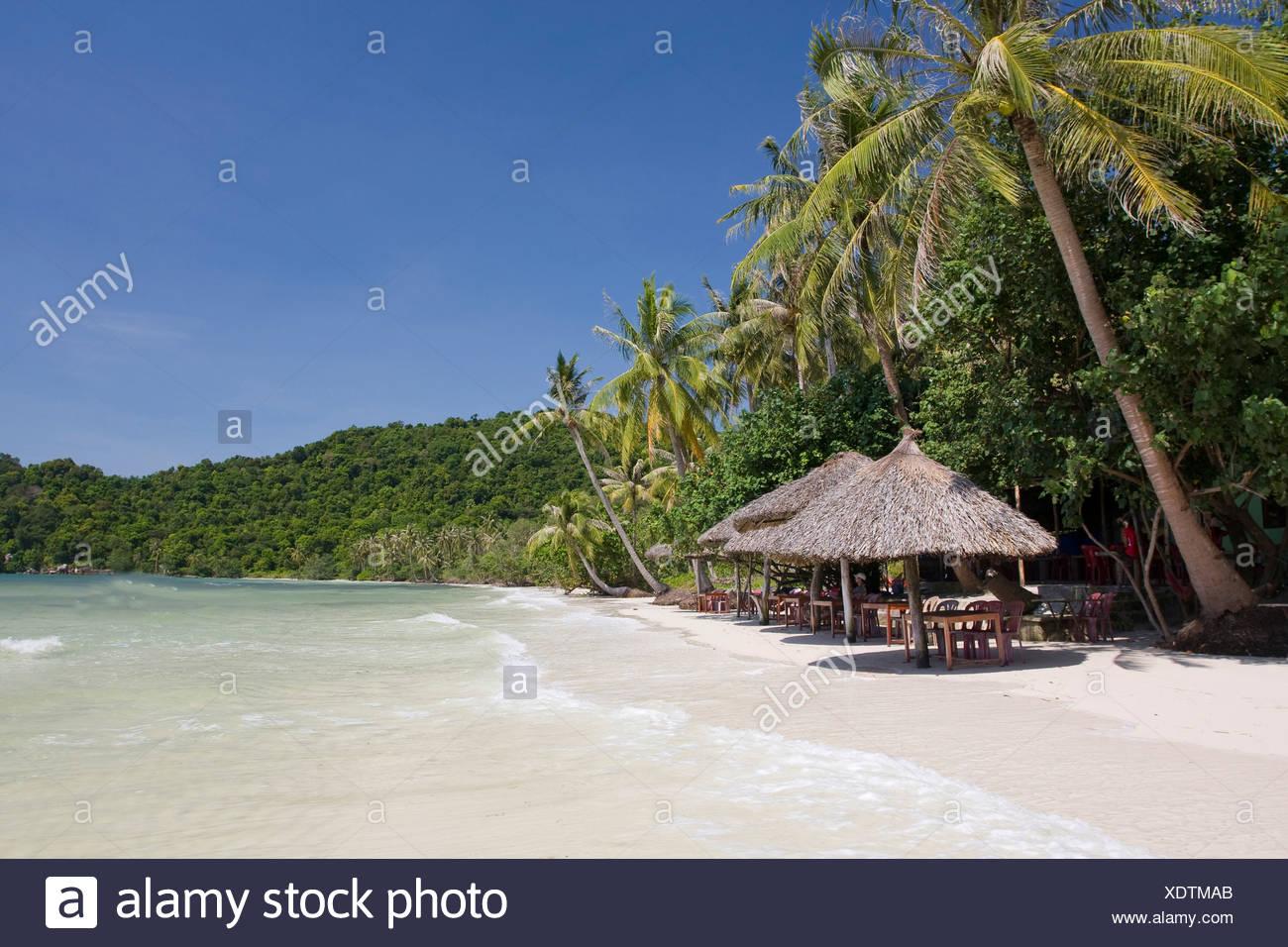 Asia, holidays, island, isle, sea, palms, Phu, Quoc, South-East Asia, South Pacific, sand beach, Sao, beach, seashore, beach vac - Stock Image