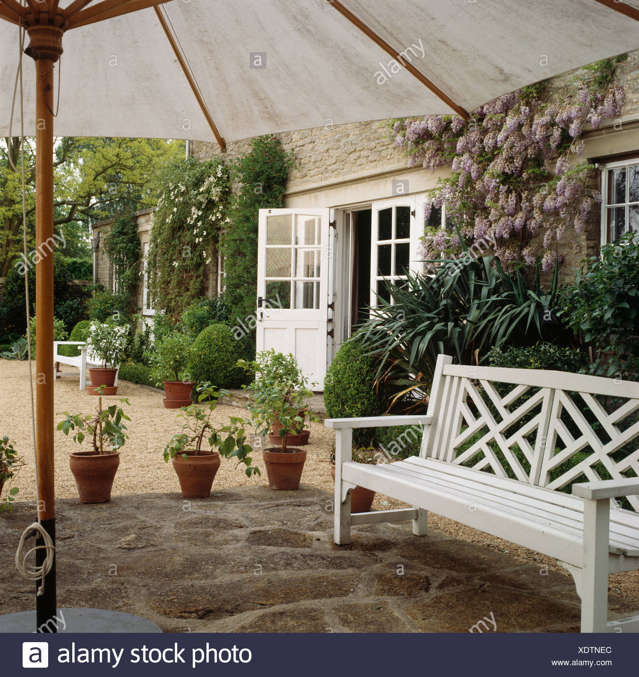 White bench on stone paved patio below large white umbrella in front of country house with pink climbing roses on the wall Stock Photo