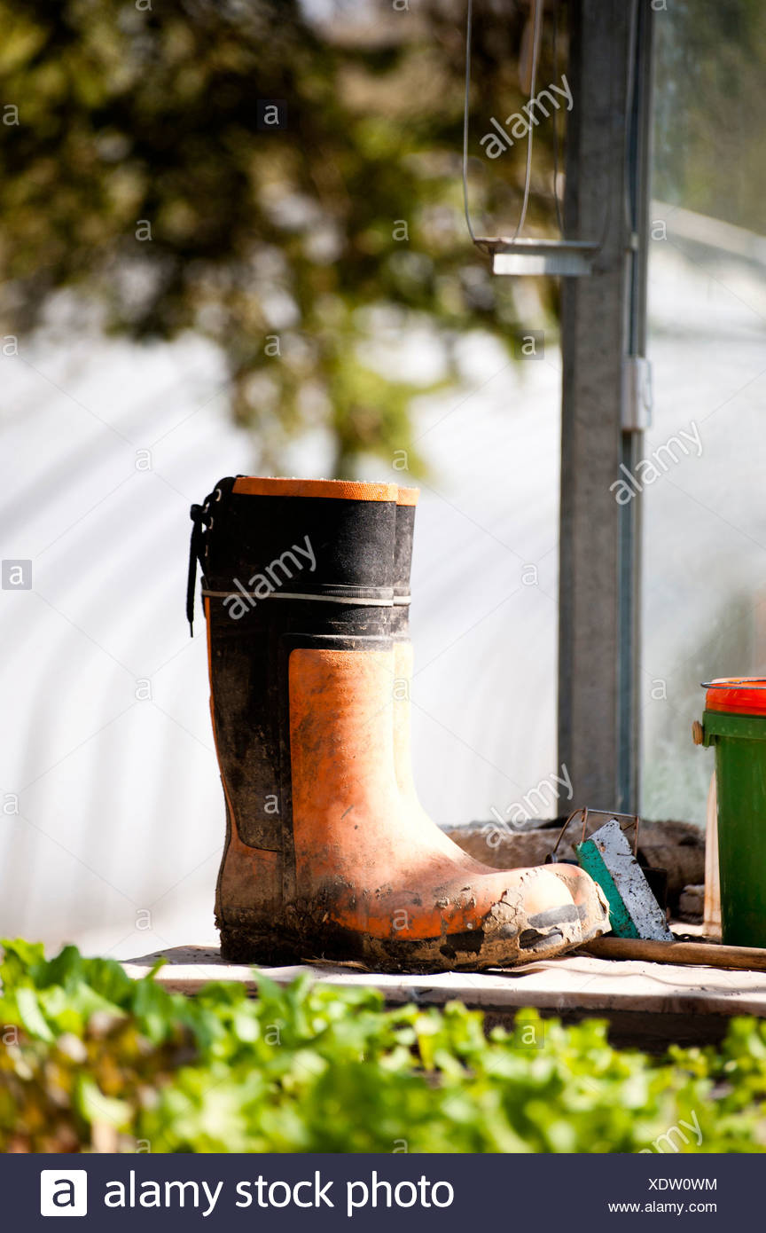 Dirty rubber boot in garden Stock Photo
