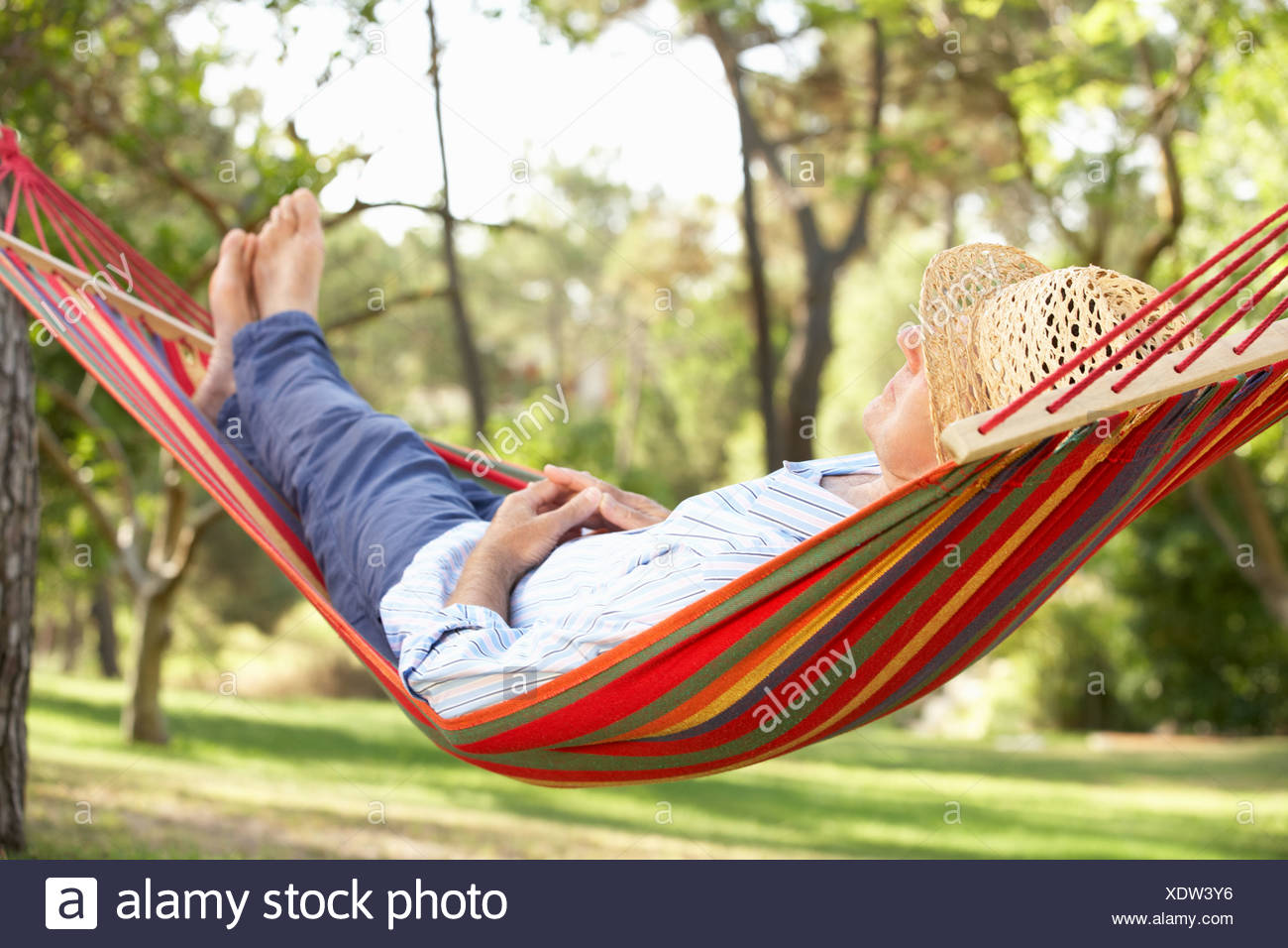 on woods bag stock depositphotos campsite tree biking camping mtb summer in sleeping photo cycling green adventure mountain hammock when and mountains travel backpack trip with bike