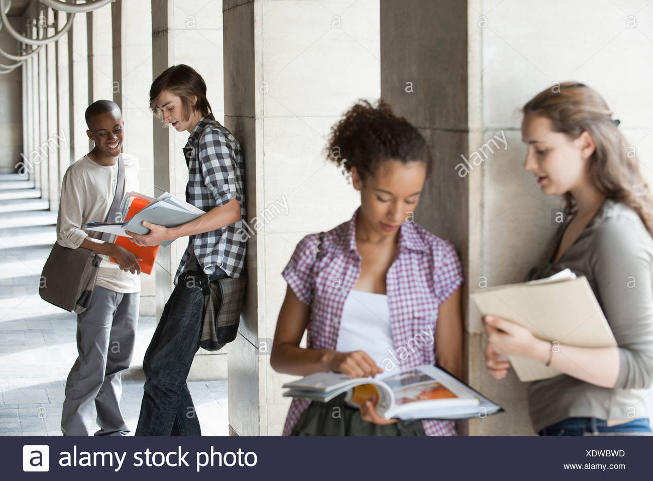 University students discussing homework, focus on men in background - Stock Image