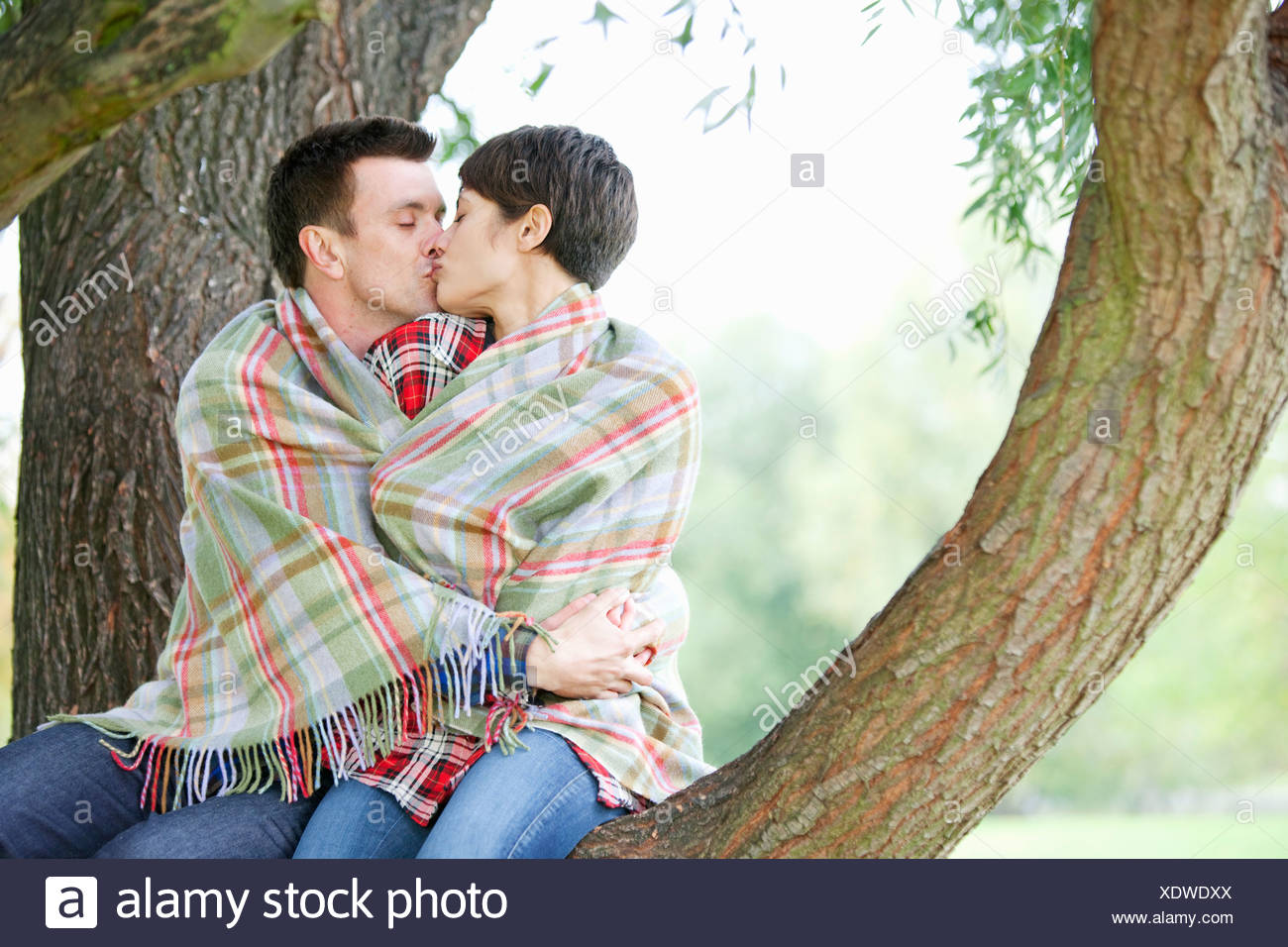 Couple kissing in a tree - Stock Image