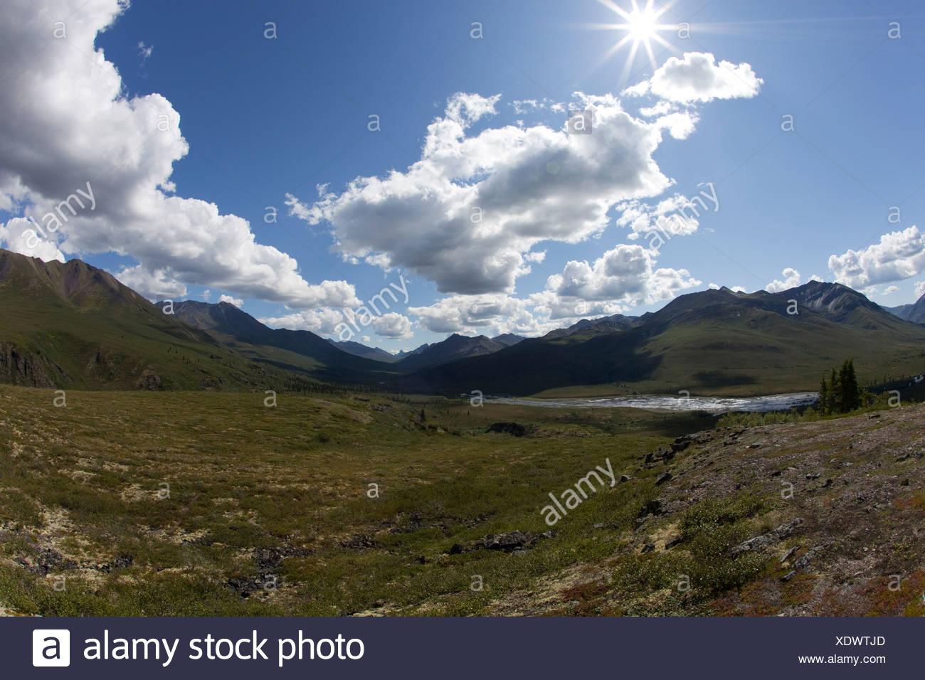 Ogilvie Mountains, Tombstone Range, North Klondike River valley, Tombstone Territorial Park, Yukon Territory, Canada - Stock Image