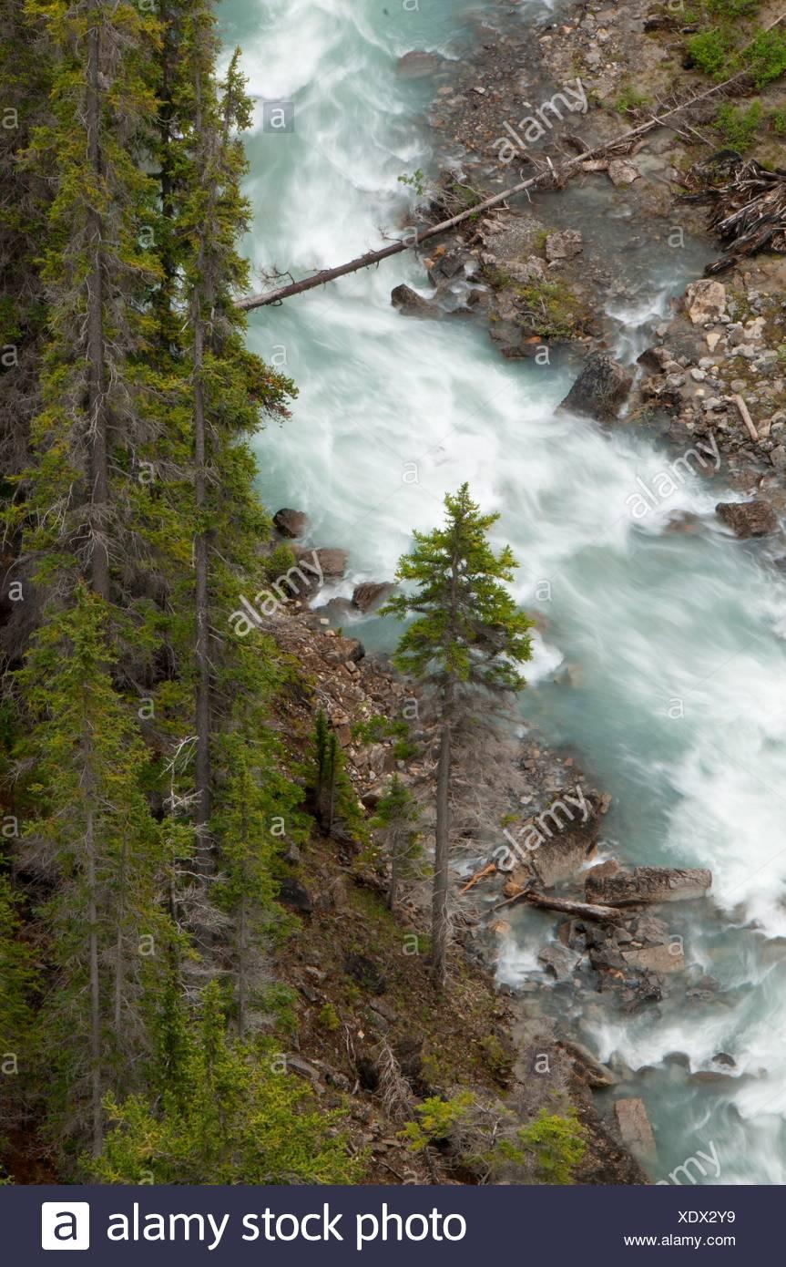 Nigel Creek, Banff National Park, Alberta, Canada - Stock Image