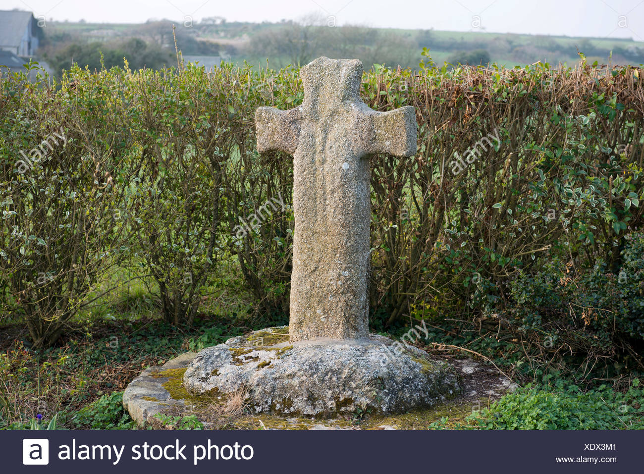 Historic stone cross in front of a hedge, Plouarzel, Finistère department of Brittany, France, Europe - Stock Image