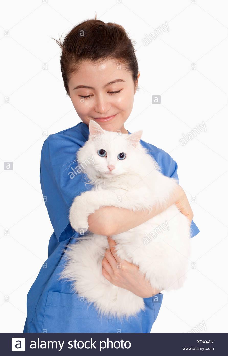 Portrait of female veterinarian holding a white cat - Stock Image