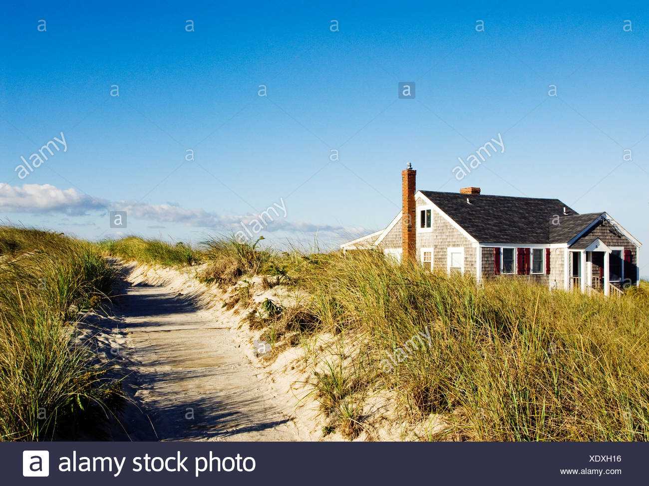 Magnificent Beach Cottage And Dune Grass Yarmouth Cape Cod Ma Stock Download Free Architecture Designs Momecebritishbridgeorg