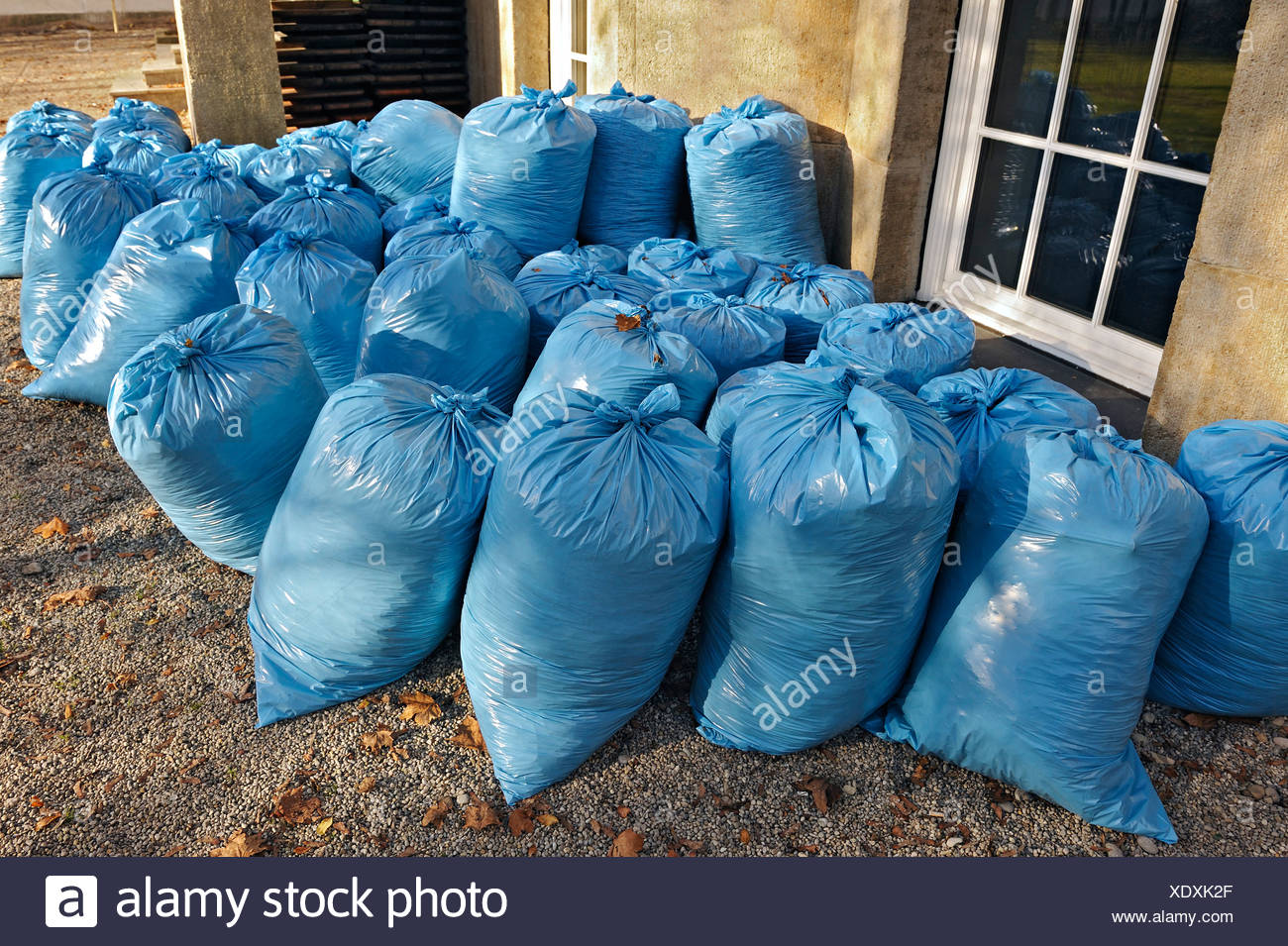 Filled light blue plastic rubbish bags, Bavaria, Germany, Europe - Stock Image