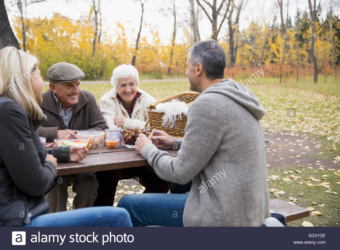 Senior and mature couples enjoying picnic at table in autumn park - Stock Image