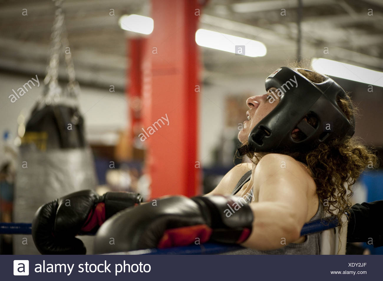 Female boxer leans against the ropes and catches her breadth between sparring rounds, Toronto, Ontario - Stock Image