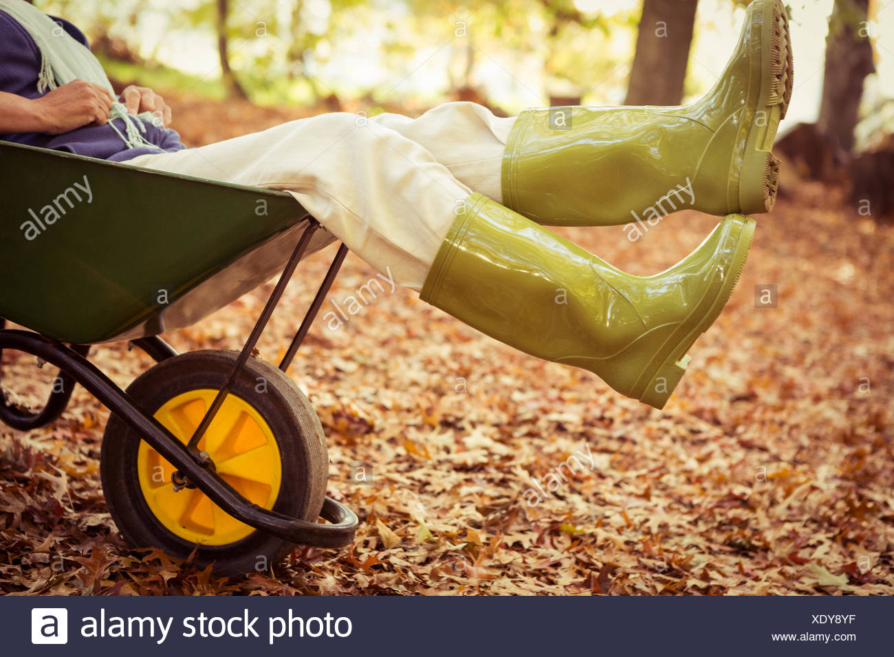 Low section of gardener sitting in wheelbarrow at garden Stock Photo