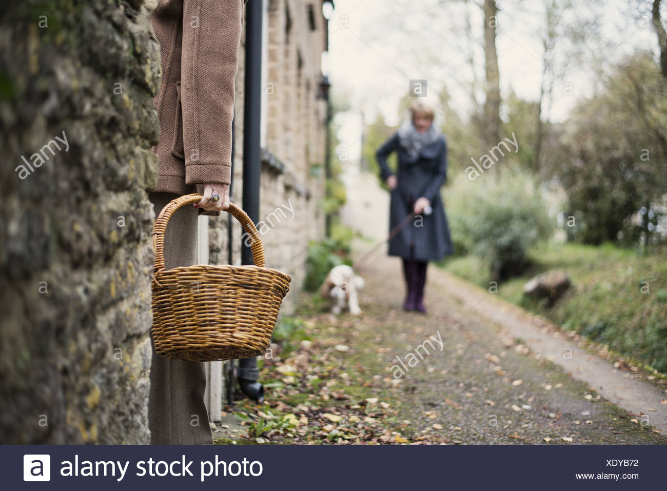 Senior woman standing in doorway, low angle view, waiting for mature woman, walking dog - Stock Image