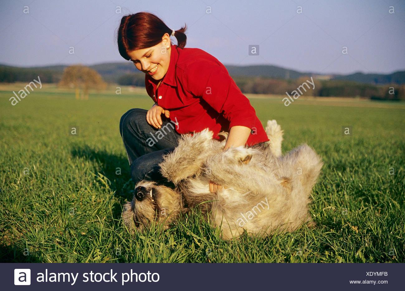 woman petting Irish Wolfhound dog - Stock Image