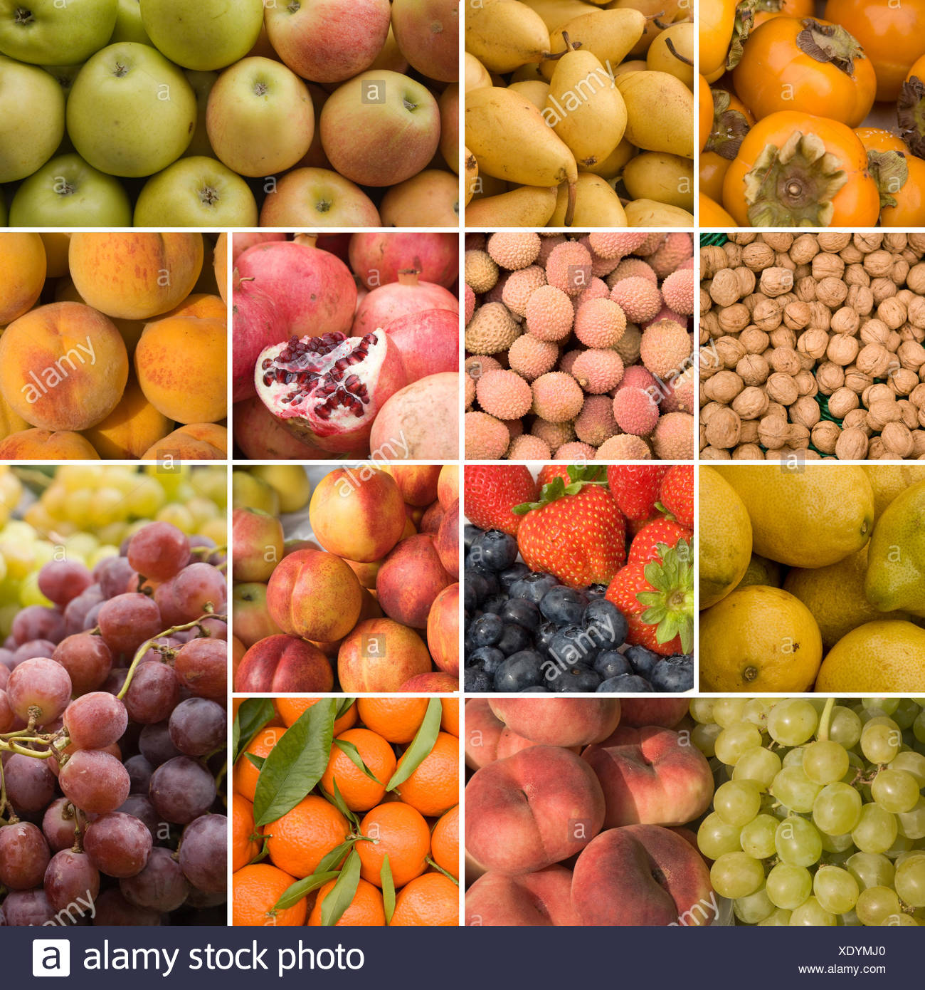 food aliment progenies Stock Photo