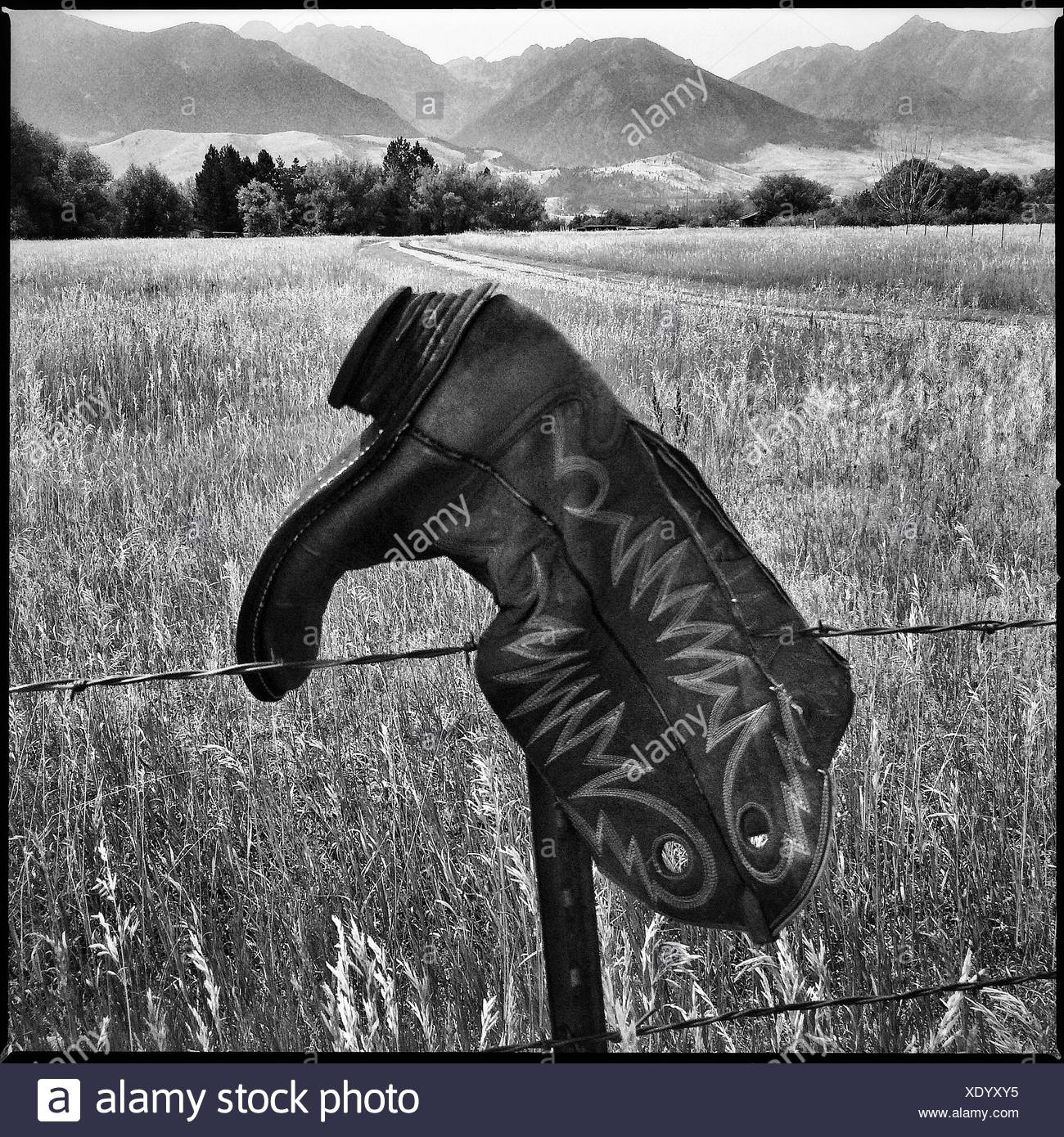 A cowboy boot hangs on a fence post near Livingston, Montana. Stock Photo