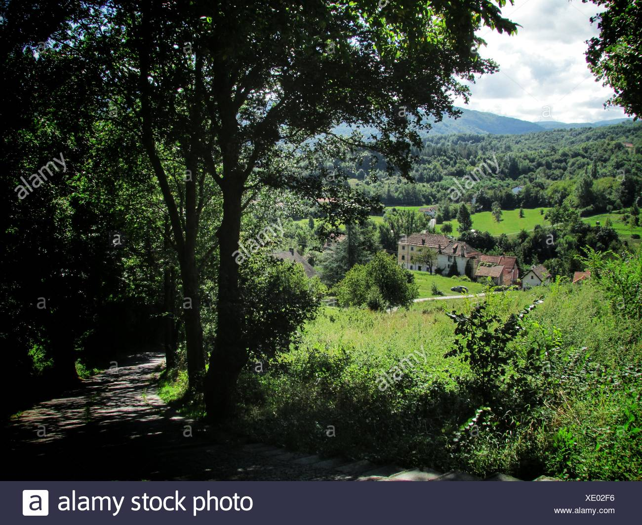 Country Road Leading Towards Houses - Stock Image