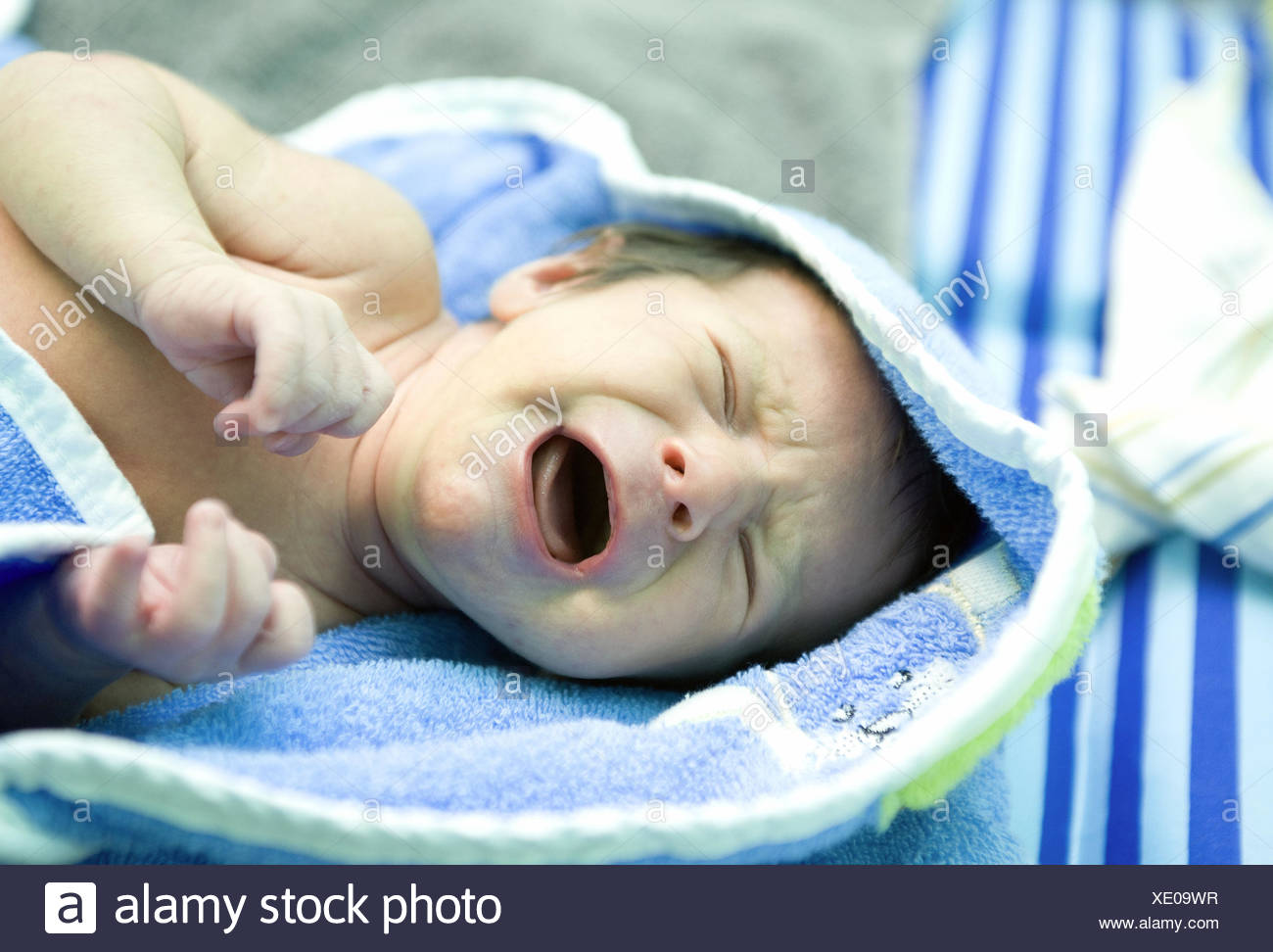 Baby, lie, shout, angrily, portrait, - Stock Image