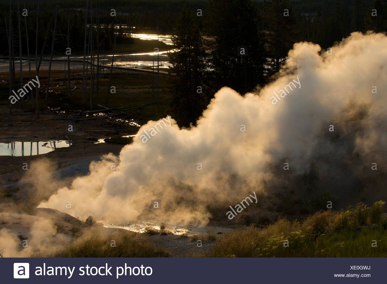 Black Growler Steam Vent at Norris Geyser Basin, Yellowstone National Park, Wyoming. Stock Photo