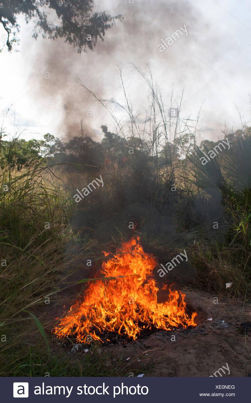 Burning rubbish in the African bush, Tanzania - Stock Image