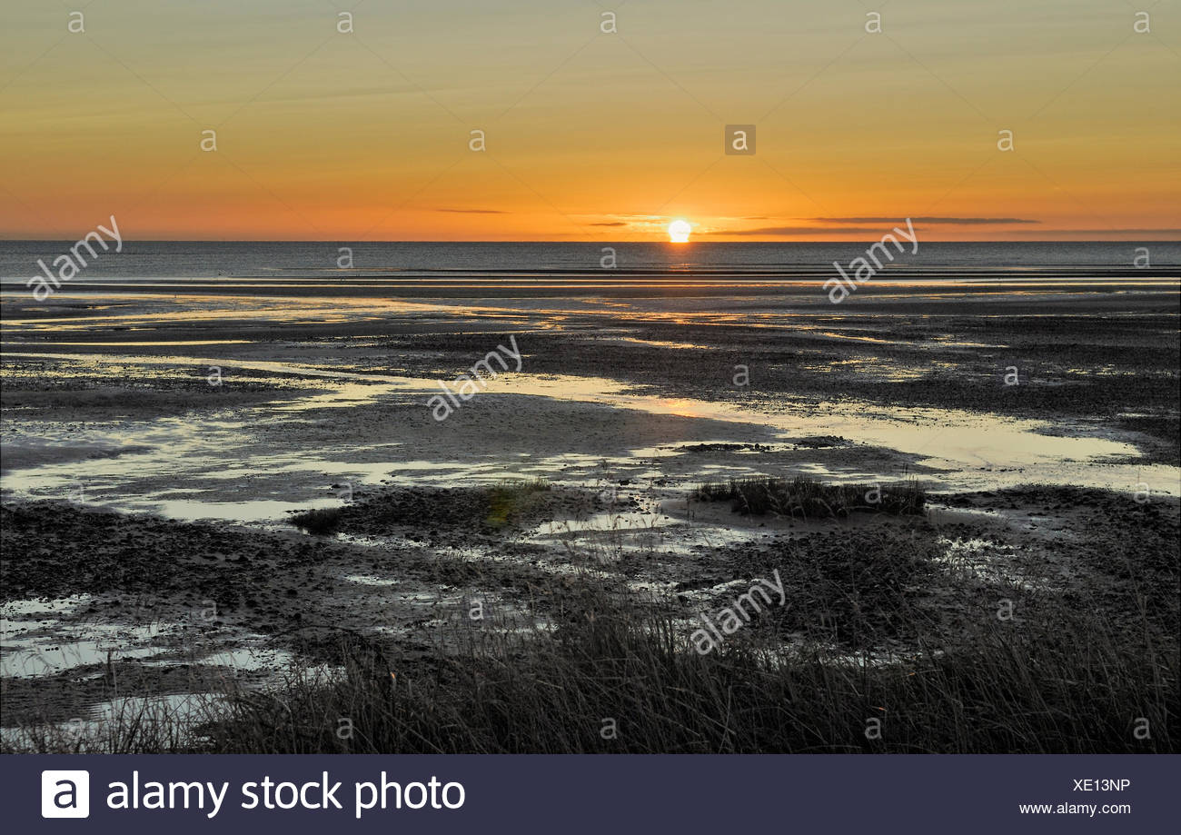Sunrise at low tide, Collingwood, Golden Bay, South Island, New Zealand Stock Photo