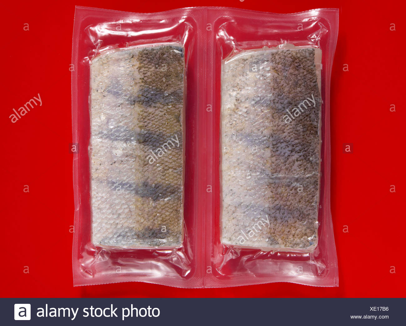 Frozen Mackerel vaccuum packed, elevated view - Stock Image