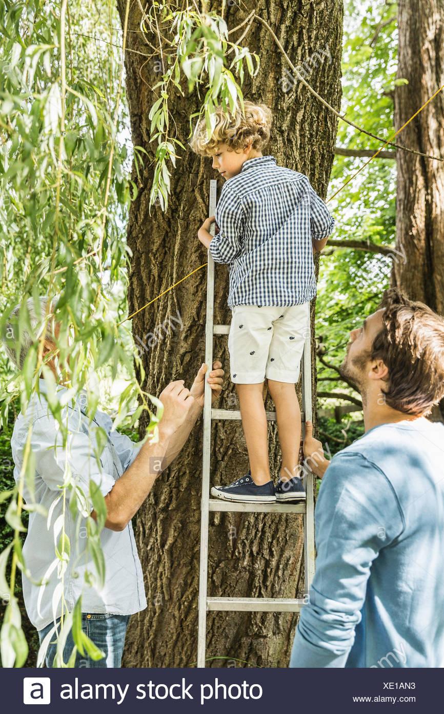 Boy climbing up tree ladder in garden - Stock Image