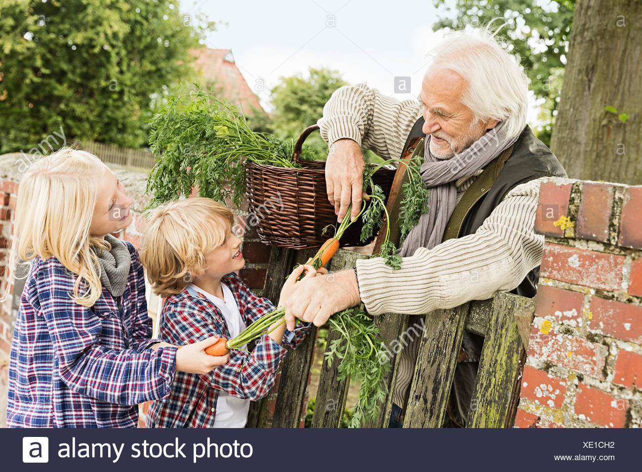 Grandfather and grandchildren by gate with carrots - Stock Image